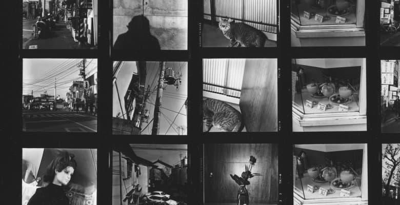 Daido Moriyama Contacts