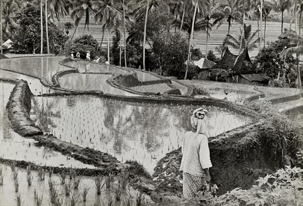 Henri Cartier-Bresson, Sumatra, Indonesia.