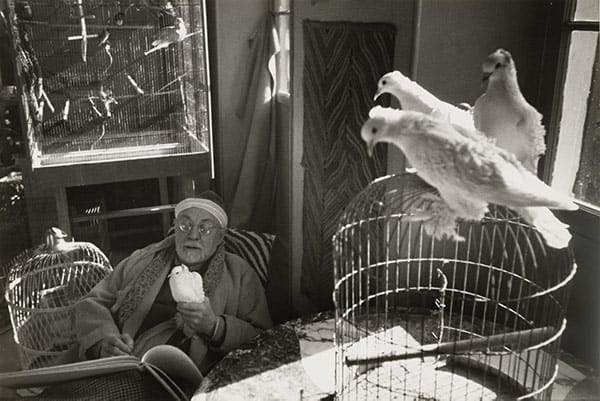 Matisse Portrait