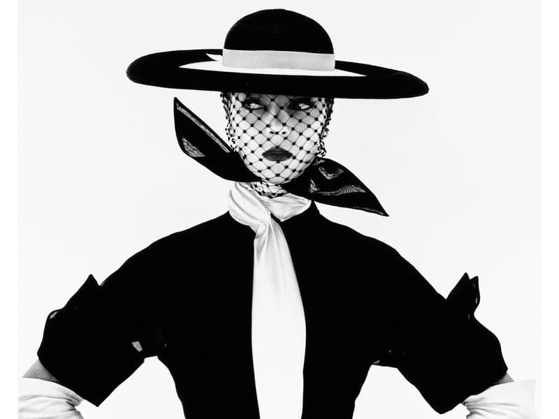 Irving Penn Feature