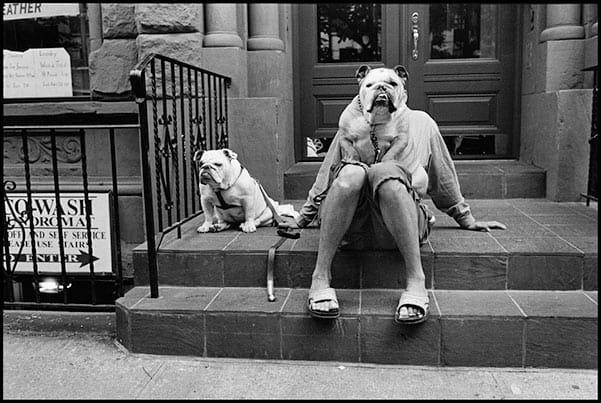 Erwitt, NYC 2000